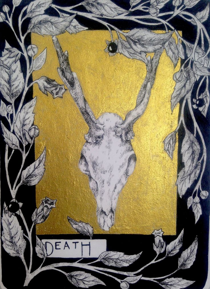 Eloise's Tarot nature based cards. Ink and pen A2 Fine Art coursework Truro College 2016