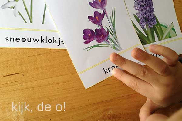 Wat kun je met woordkaarten? - Lespakket - thema's, lesideeën en informatie - onderwijs aan kleuters