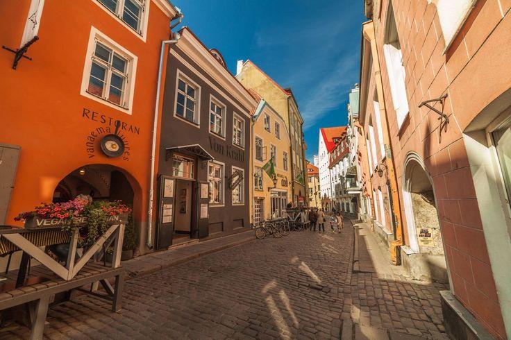 Uskomattoman hyvää kasvisruokaa, huippujälkkäreitä, aurinkoisia terasseja... Keräsimme Tallinnan helmet yhteen.