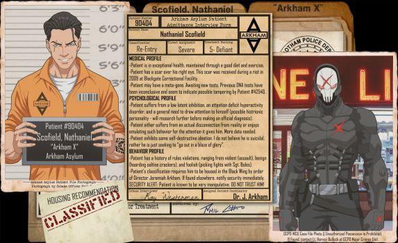 Arkham Files - Arkham X by Roysovitch