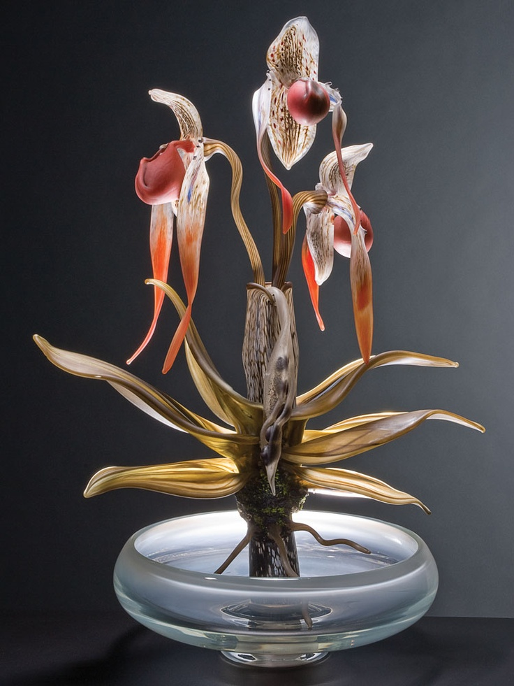 Glass, Debora Moore, Artist, Phragmapedium - Plant Series, 2010; blown and hot-sculpted glass; 28 x 16 x 11 in., Photo:  Lynn Thompson