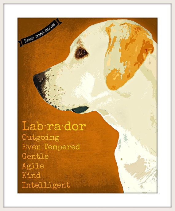 Hey, I found this really awesome Etsy listing at https://www.etsy.com/listing/240783763/yellow-labrador-retriever-printable-dog