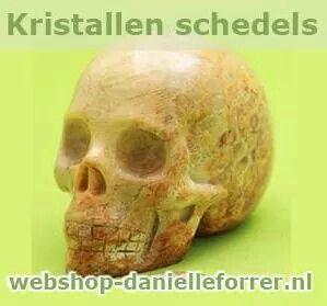 Diverse kristallen schedels in de webshop danielle forrer verkrijgbaar.