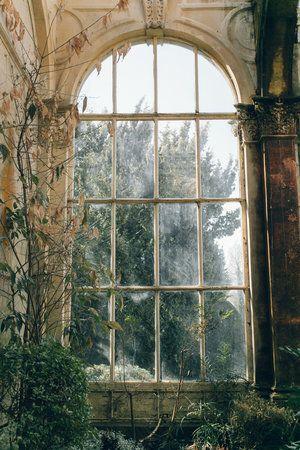 25 + › Castle Ashby Orangerie – in der Nähe von Northampton, UK – Suzan