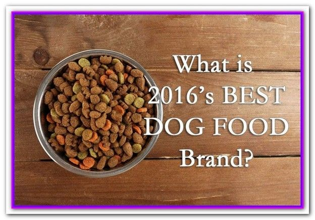 Best Affordable Dog Food 2016 Taste Of The Wild Whole Earth