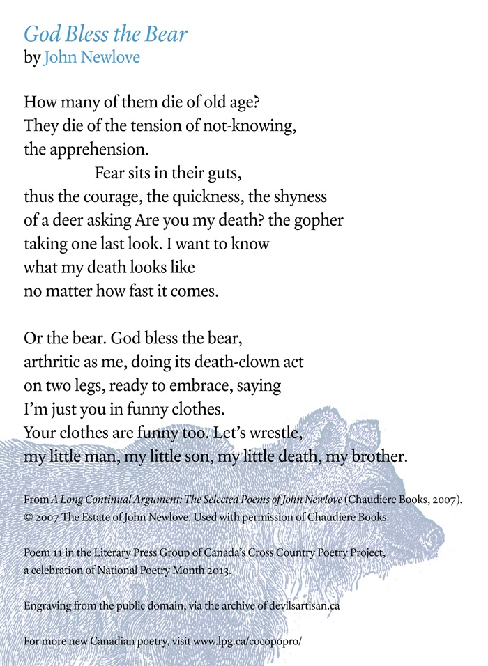 Poetry Month Day 9: God Bless the Bear by John Newlove from A Long Continual Argument (Chaudiere Books)