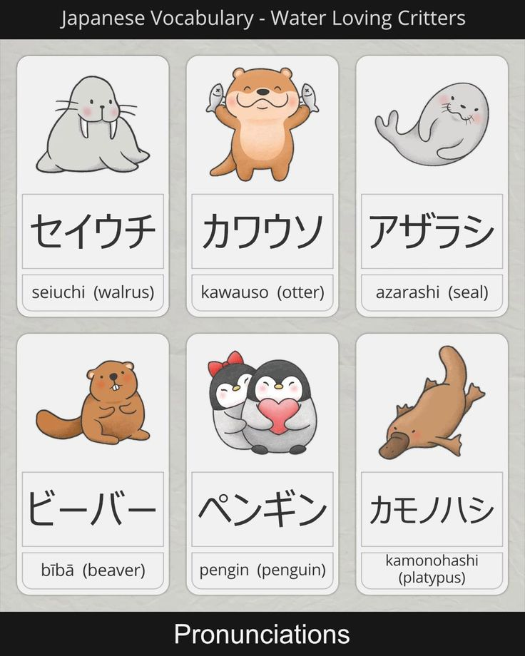 How to say Water Loving Animals Names in Japanese [Video
