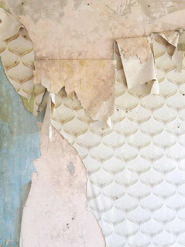 gorgeous scallop peeling wallpaper. abandoned buildings, beautiful decay