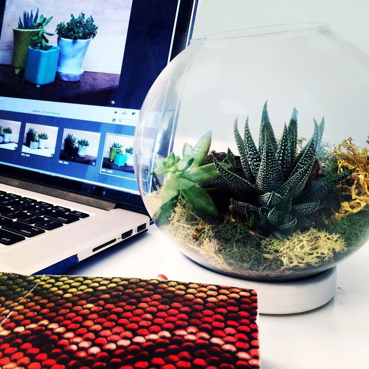 Design - Think Green: Bring a bit of green to your office space with this perfectly sized terrarium. Not only do they keep you company but opens up the area with a break of natural color. http://bit.ly/1hpVDM2