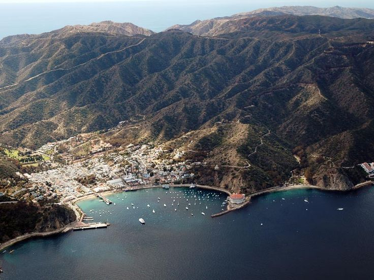 What S There To Do In Catalina Islands