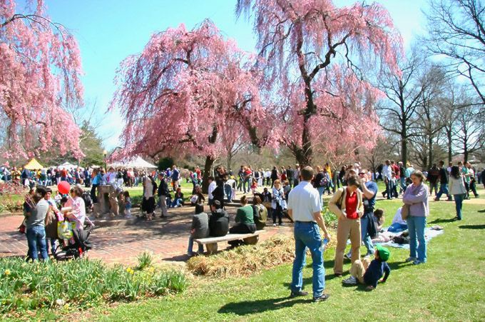 Coming Attraction: The 2014 Subaru Cherry Blossom Festival Returns With Tons Of Family-Friendly Events Across Philadelphia, April 2-13