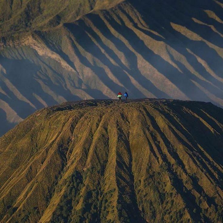 Lokasi: Taman Nasional Bromo Tengger Semeru, Jawa Timur, Indonesia . Follow juga IG baru kita yang ga kalah keren: @adventurex.id . Taman Nasional Bromo Tengger Semeru memiliki tipe ekosistem sub-montana, montana dan sub-alphin dengan pohon-pohon yang besar dan berusia ratusan tahun antara lain cemara gunung, jamuju, edelweis, berbagai jenis anggrek dan rumput langka. Pada dinding yang mengelilingi TN Bromo Tengger Semeru terdapat banyak rerumputan, mentigi, akasia, cemara, dll. . Foto oleh…
