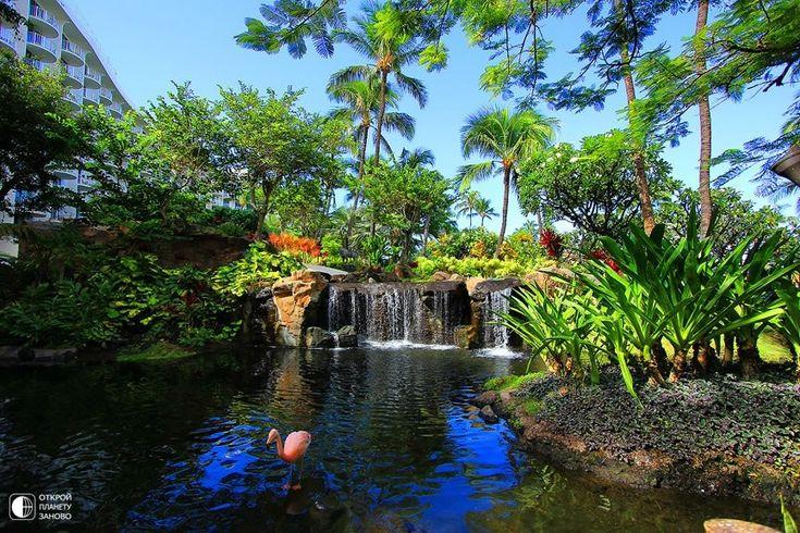 Остров Мауи - Эдемский сад - Путешествуем вместе