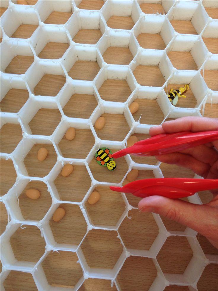 Steek de bijen en de larven in een cel (één-één- verbinding en pengreep oefenen)