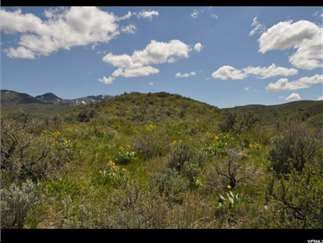 Malad City, Oneida County, Southeastern, ID Farms and Ranches For Sale - 10.92 Acres