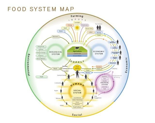 Food System Tool: Food System Maps Thumbnail Jpg, Foodsystem, Food Study, Food Choice, Study Infographic, Education, Downloads Tools, System Tools, Awesome Infographic