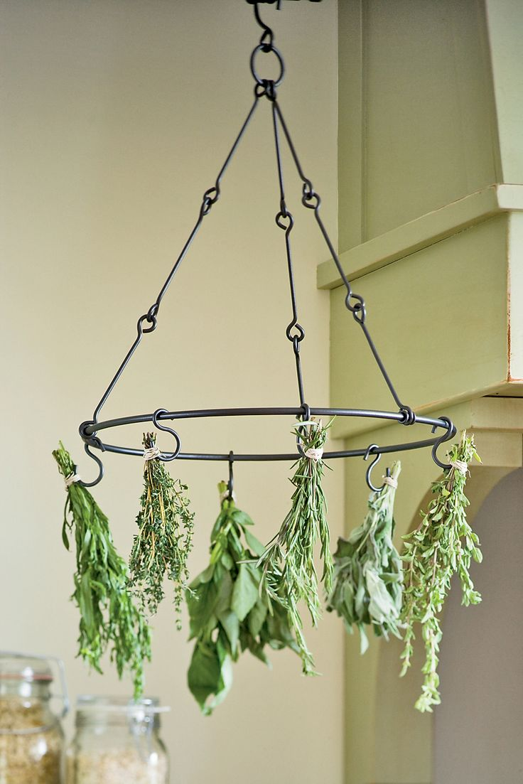 Herb drying rack--perfect for me since I grow herbs in my garden. I could make this from recycled hangers.