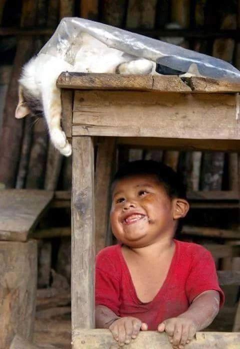 AMO esta imagen, la sonrisa de este pq!! Me hizo el dia. :D