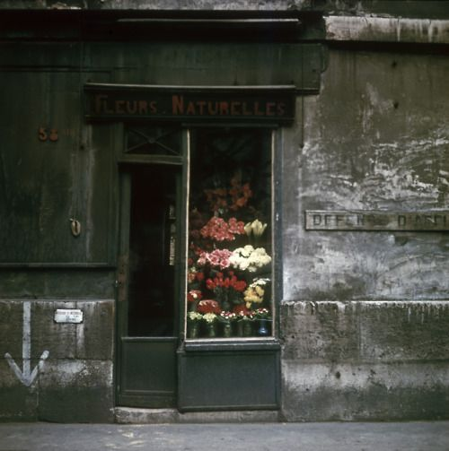 Flower Shop, Paris, 1950s   by Victor Meeussen