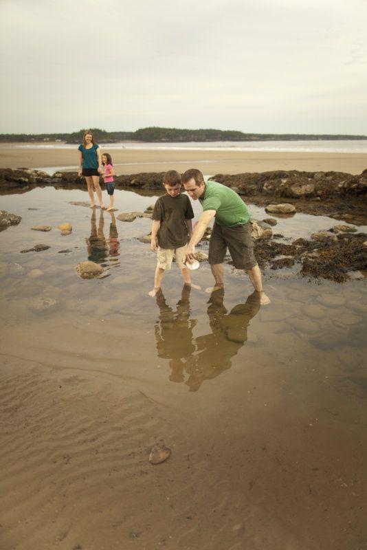 Les petits explorateurs à la recherche de coquillages délicats, de cailloux polis par la mer et de créatures marines feront de belles découvertes à la plage du parc provincial New River Beach.