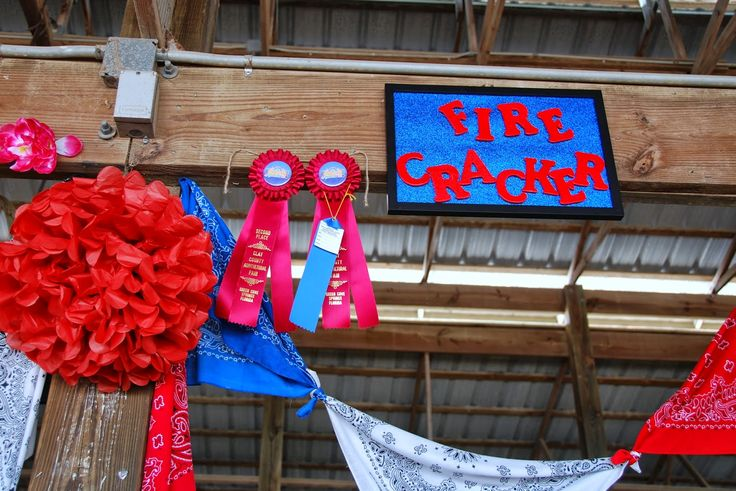 decorating animal pens county fair | The cow stalls seemed more decorated this year.