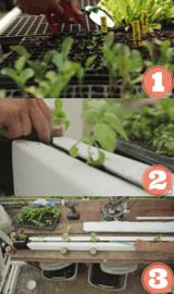 How to plant a zipgrow tower