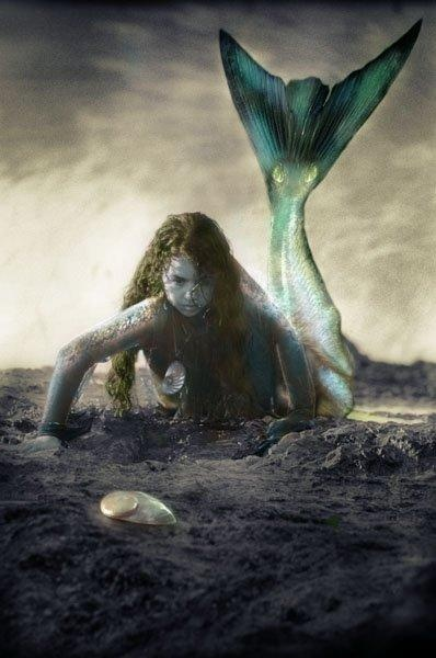 1000  images about Mermaids on Pinterest