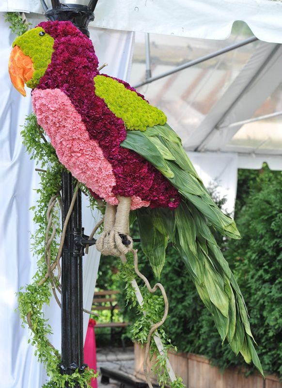 Elaborate floral parrot