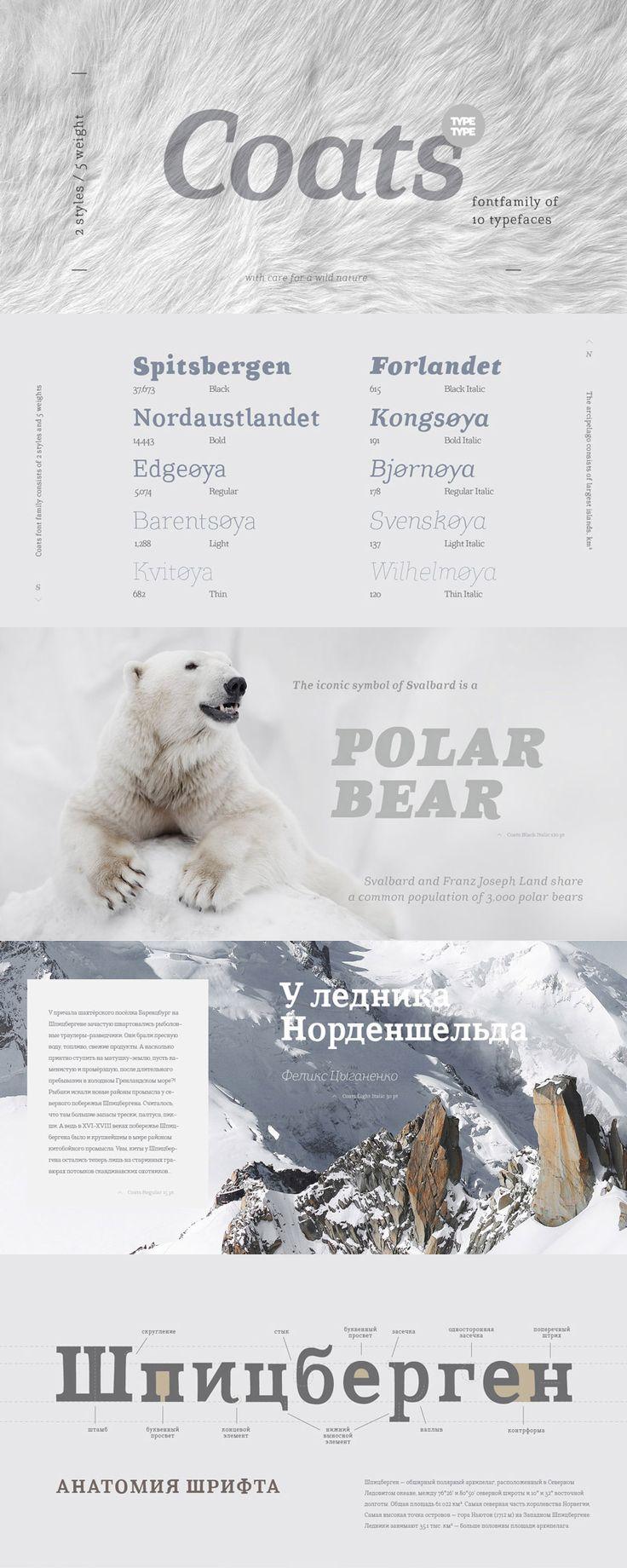 55-modern-script-typefaces