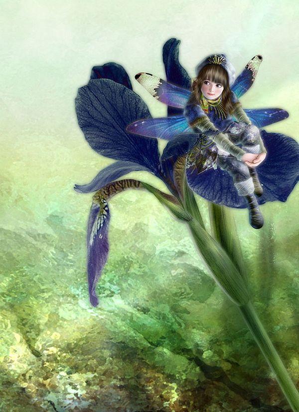 Iris Fairy Painting by Miharu Yokota | Cuded