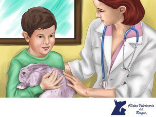 ¿Debo cortarle las uñas a mi conejo? LA MEJOR CLÍNICA VETERINARIA DE MÉXICO. Si, como todo ser vivo, las uñas requieren un aseo y mantenimiento para evitar problemas, por ello deben cortarse de forma periódica. Para hacerlo, lo más aconsejable es aprender el procedimiento de alguien con experiencia, como un veterinario, ya que un corte incorrecto puede lastimar seriamente a tu mascota. En Clínica Veterinaria del Bosque te sugerimos traerla para que lo realice un profesional…