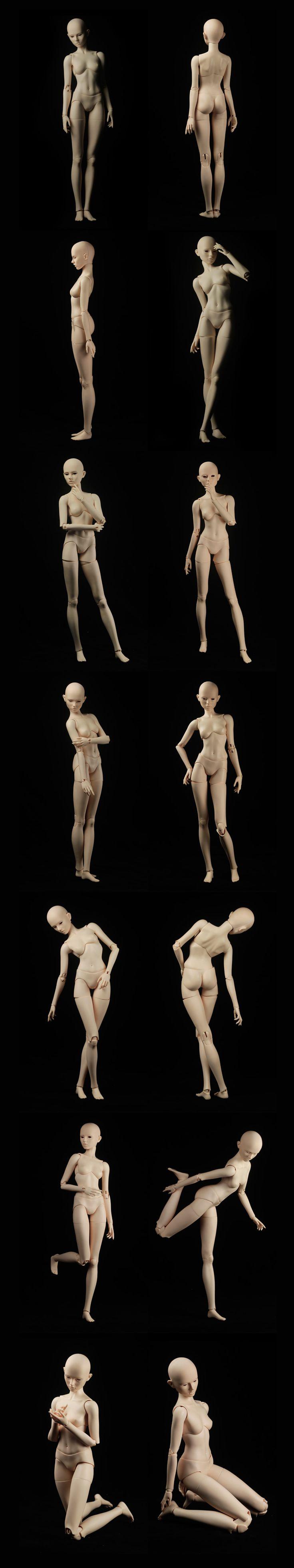Female Body nuevo