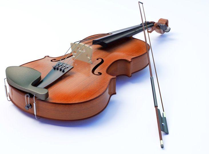 картинки скрипка и смычок на телефон сорта рыбы