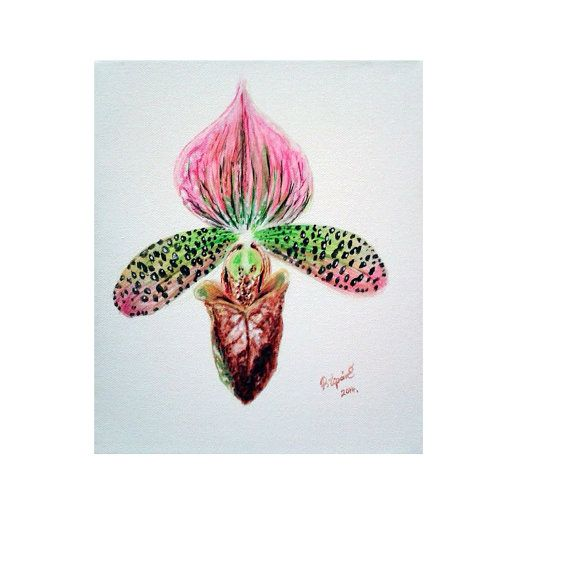 Original exotic tropical flower painting Paphiopedilum by Pilipart, $52.00