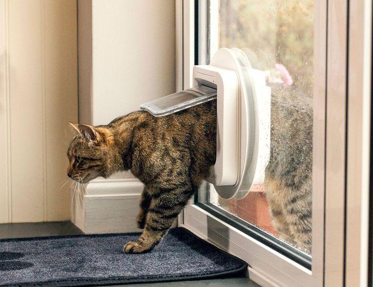 Katzenklappe Test 2017 • Die 10 besten Katzenklappen im Vergleich - ExpertenTesten