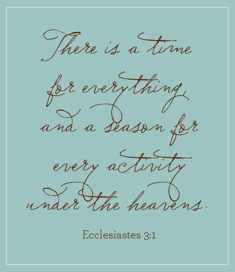 Image result for there is a time for everything bible verse