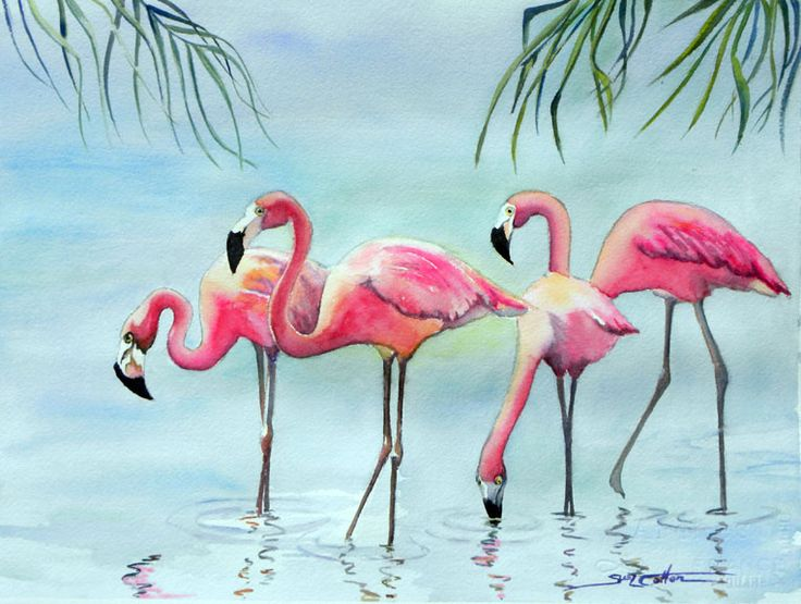 Pin by Carolyn Doerr on Watercolors | Flamingo art ...