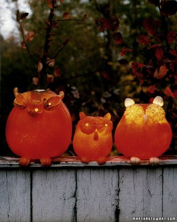 The owls' extra-large eyes are made from halved miniature pumpkins and gourds. Their feet and ears are curved pieces of pumpkin.