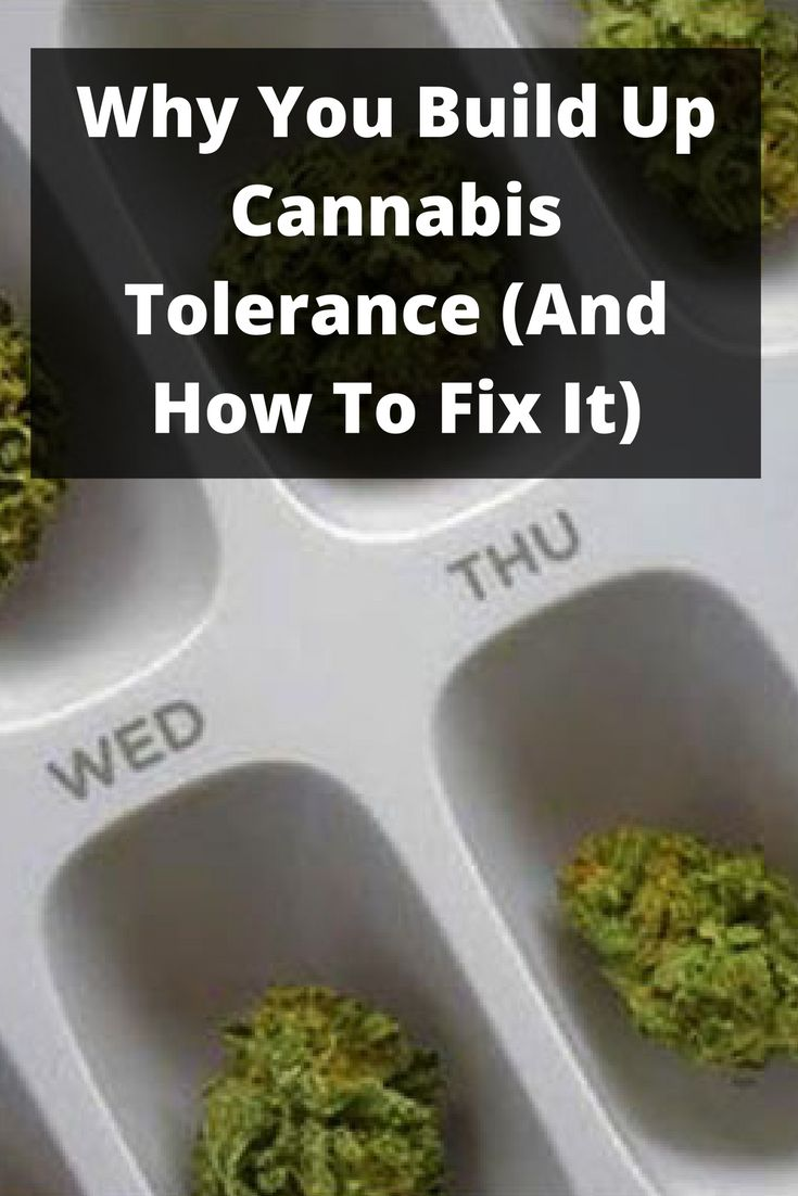 Why You Build Up Cannabis Tolerance (And How To Fix It)
