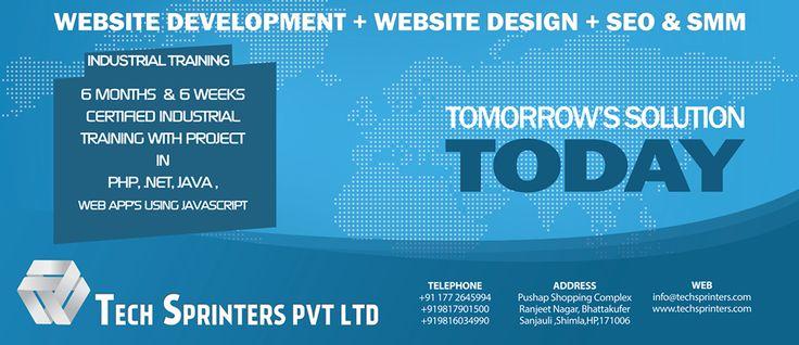 Website Design, Development, SEO and Internet Marketing Company in Shimla India.