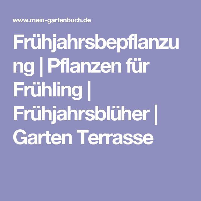 New Fr hjahrsbepflanzung Pflanzen f r Fr hling Fr hjahrsbl her Garten Terrasse