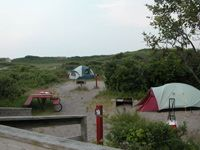 Small tents with grills and picnic tables are nestled among low shrubs and small trees at Watch Hill on Fire Island. Camping on FI this summer