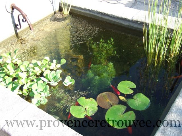 Magnique petit bassin cologique dans cette fontaine en for Bassins de jardin en pierre