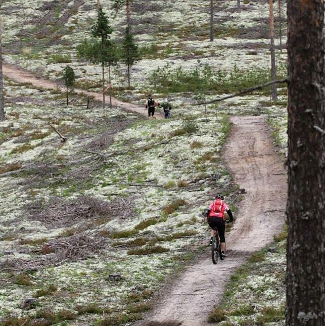 "80 tykkäystä, 1 kommenttia - Rokua Health & Spa Hotel (@rokuahealthspa) Instagramissa: ""Ulkoile ja rentoudu Rokualla 