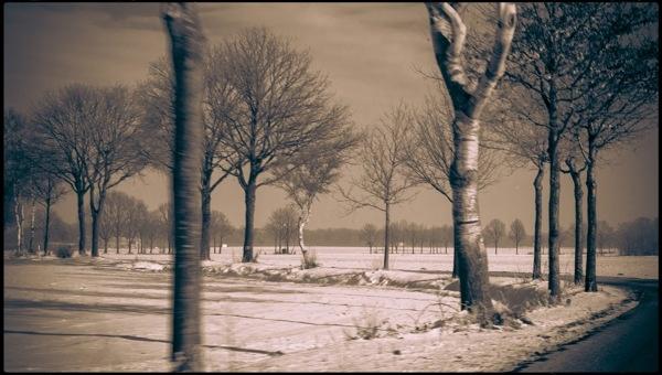 Winter in Holland by Angela Goossens, via Behance