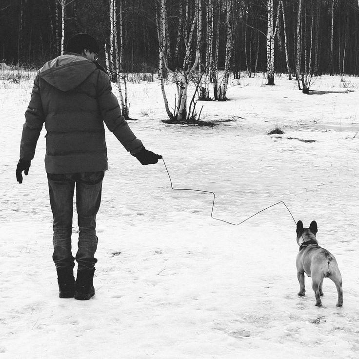 Hunting ))) --- #hunting #surreal #surrealism #lines #wire #bw #bnw #mono #blackandwhite #monochrome #dog #bulldog #frenchbulldog #dogleash #leash