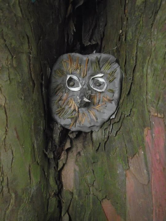"""Would be great to make clay owls/faces to put in the trees at school (image from Copse and Loppers Forest School) ("""",)"""