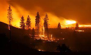 2015 Okanogan Complex Fire in Washington state