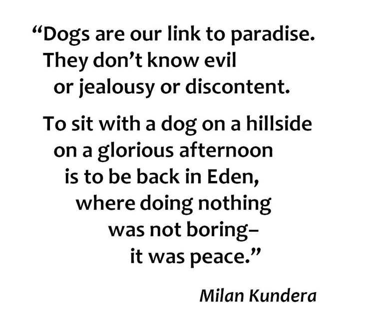 """""""Dogs are our link to paradise..."""" Milan Kundera - - from The Unbearable Lightness of Being"""