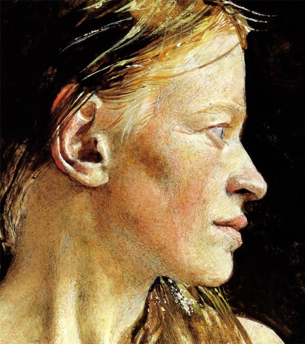 Andrew Wyeth - Detail of one of the Helga paintings